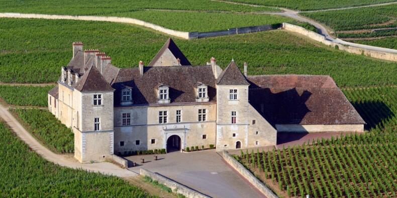 En Bourgogne, les prix des vignes atteignent des millions