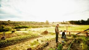 L'État attaqué par des agriculteurs bio pour non-paiement
