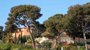Immobilier : de l'appartement au château, où trouve-t-on le haut de gamme et à quels prix ?