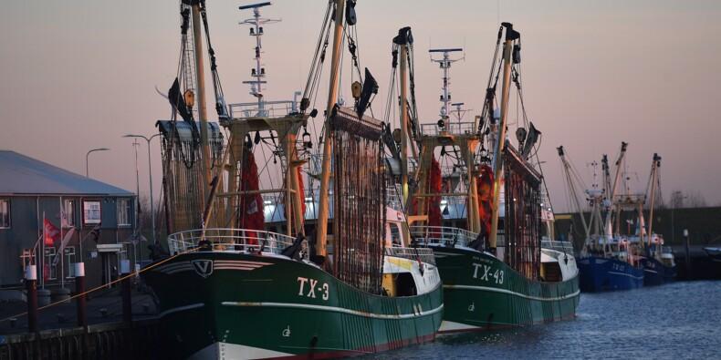 """Brexit: """"à la merci de la politique"""", les pêcheurs néerlandais redoutent le naufrage"""