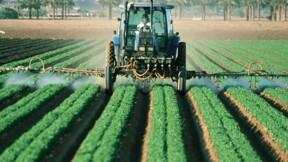 Pesticides : la guerre contre l'excès de chimie est déclarée