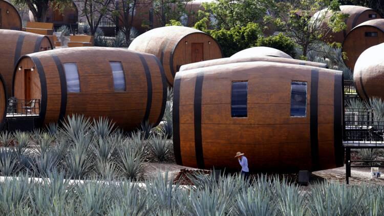 Un hôtel propose de dormir dans une barrique de tequila