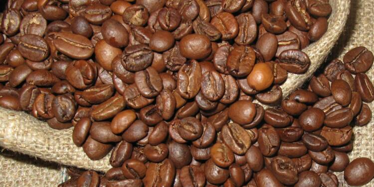 Café : les cours se sont effondrés, mais pas les prix pour le consommateur !
