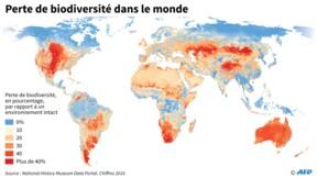 130 pays au chevet de la nature si vitale pour l'humanité