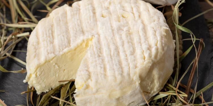 Leclerc, Lidl, Auchan... : rappel de fromages soupçonnés de contamination à la bactérie E. coli