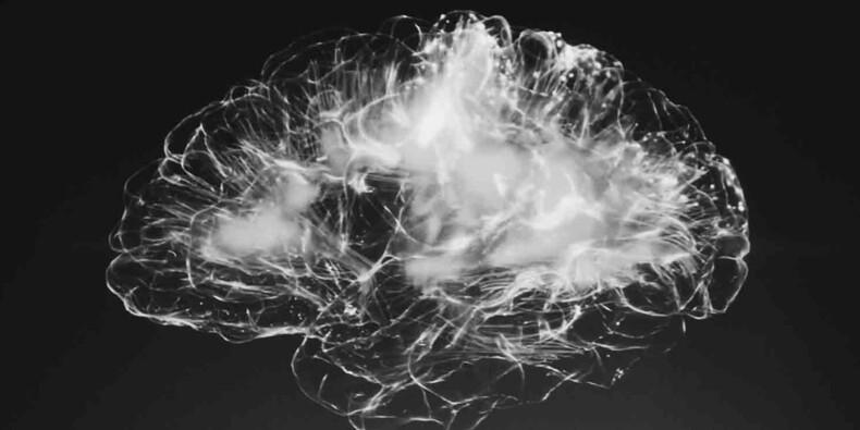 Les neurosciences appliquées à l'entreprise : l'ère du bullshit ?