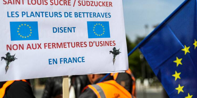 Südzucker rejette le plan de sauvetage des betteraviers pour ses sucreries françaises