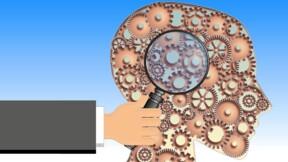 Mode d'emploi du cerveau au boulot