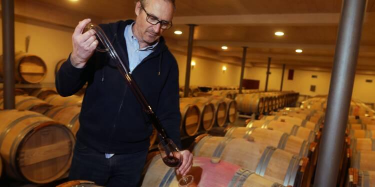 Vin : visite guidée de la plus vieille fabrique de tonneaux de France