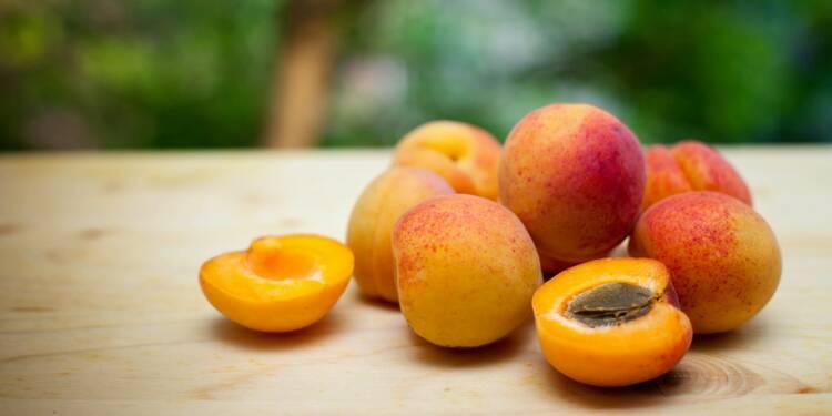 L'achat des abricots au producteur bientôt impossible en raison d'une norme ?
