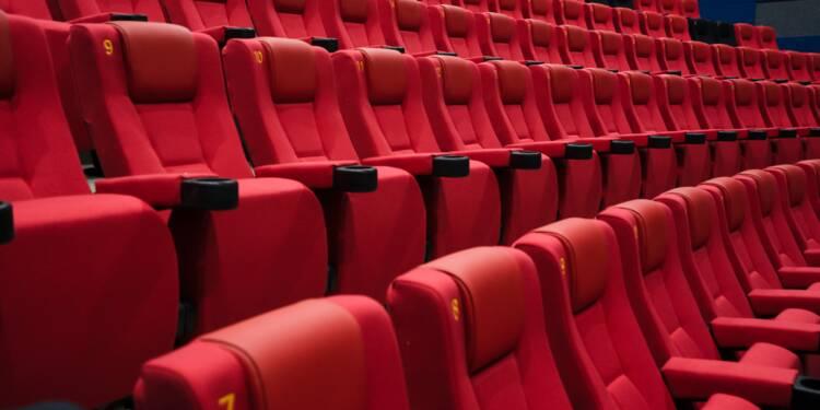 """""""Plus de la moitié des films aidés font moins de 50.000 entrées"""" accusent deux députées"""