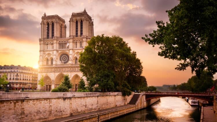 Notre-Dame de Paris : seulement 9% des dons promis sont arrivés