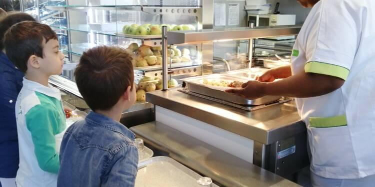 Meal Canteen : l'appli qui réduit le gaspillage à la cantine