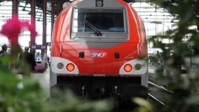 La SNCF inflige 100 euros d'amende à un mal-voyant qui ne pouvait pas acheter son billet… avant de faire marche arrière