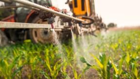 Un arrêté anti-pesticides pose problème dans les Yvelines