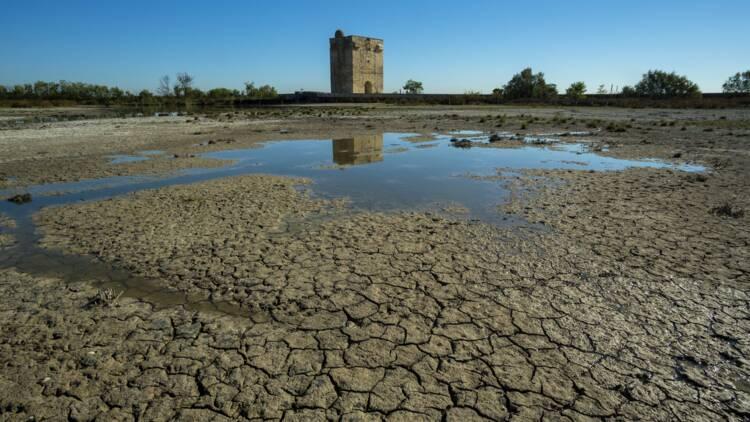 Le coût exorbitant de la sécheresse pour les assureurs