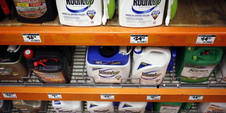 Roundup : la condamnation de Monsanto divisée par 24