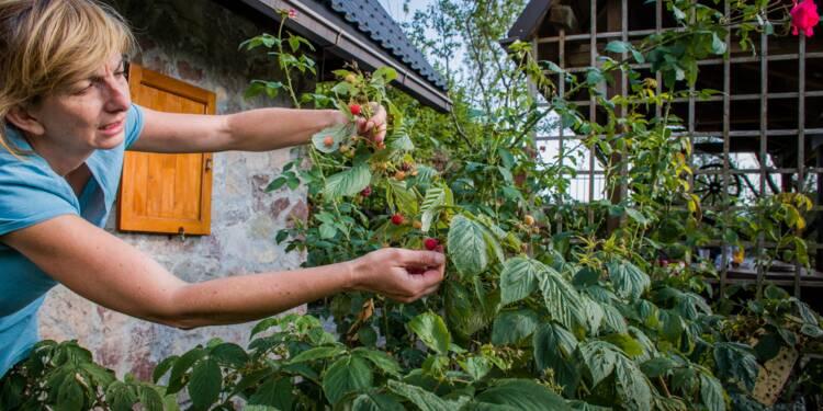 83 ans après, les Voies navigables de France veulent récupérer son jardin