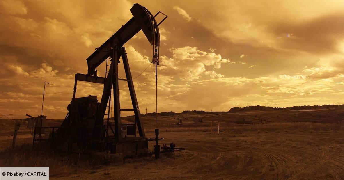 Donald Trump et Vladimir Poutine vont discuter du pétrole