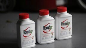 Bayer : 8 milliards de dollars sur la table pour se débarrasser du dossier Roundup ?