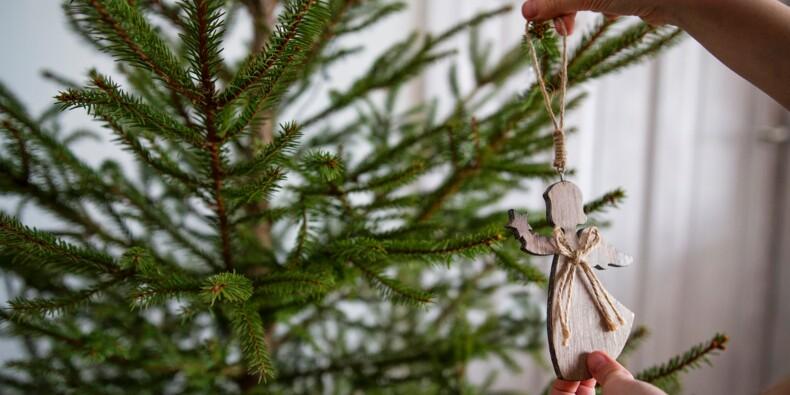 Vers une pénurie de sapins à Noël ?