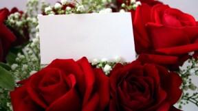 Envoyer des fleurs sans connaître l'adresse, c'est désormais possible