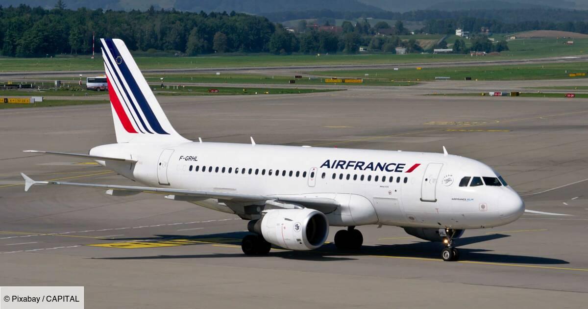 """Vols annulés : l'ex-patron d'Air France-KLM demande """"à genoux"""" l'aide des clients"""