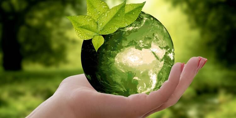 Ces entrepreneurs ont décidé de lutter contre la crise écologique