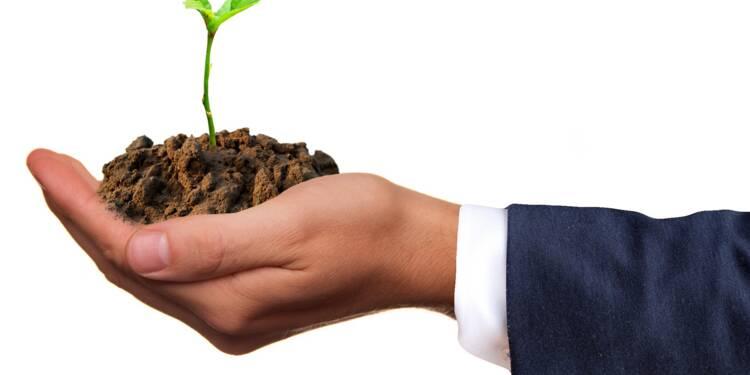 Solidarité, environnement... Salariés et patrons, voilà comment ils tentent de changer l'entreprise