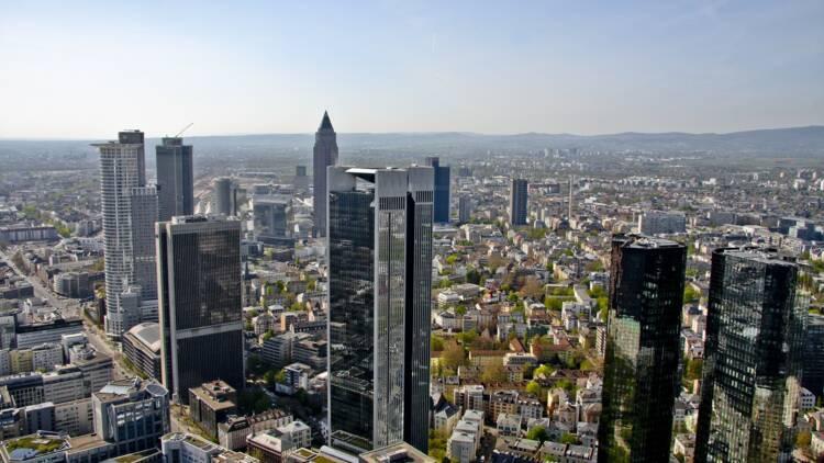 Allemagne : le pactole trouvé par une chienne des douanes de l'aéroport de Francfort