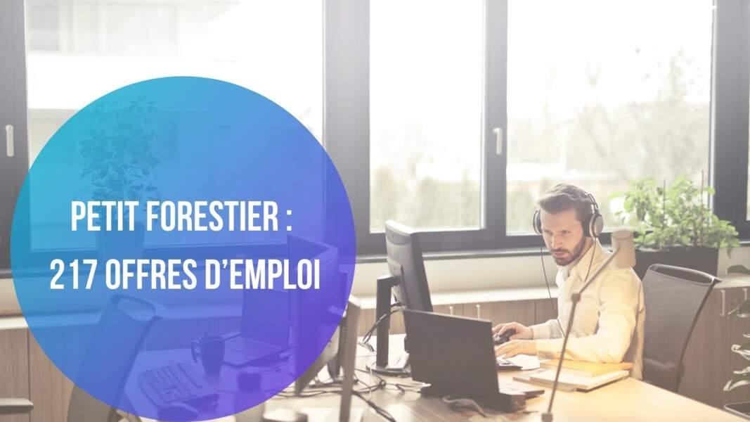 Petit Forestier : 217 offres d'emploi