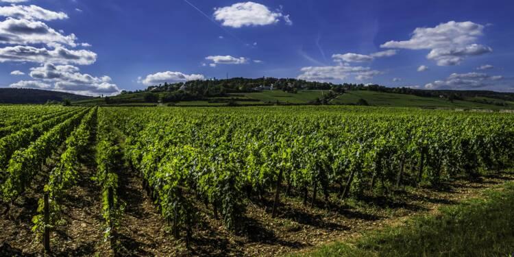 Face aux sanctions de Trump, la Côte-d'Or lui offre du Bourgogne pour qu'il renonce
