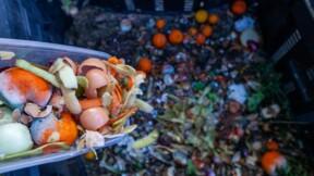 Des magasins Carrefour et Franprix accusés d'avoir jeté des aliments non périmés
