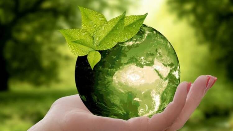 Eau, énergie, minerais... l'impact environnemental désastreux du numérique mondial