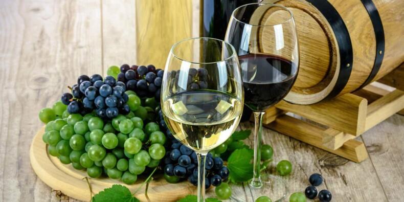 Les pays où la production de vin a augmenté en 2019 et ceux où elle a dégringolé