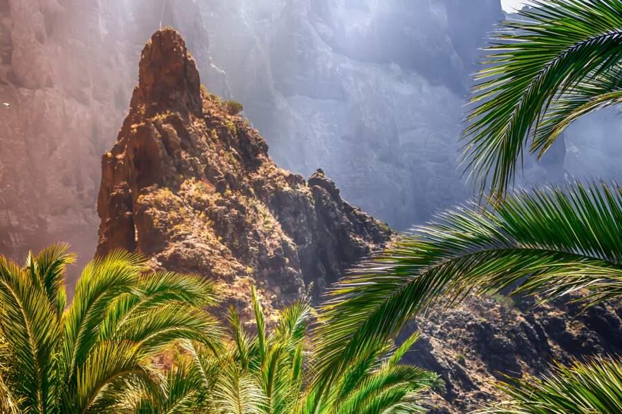 Palma (Majorque)