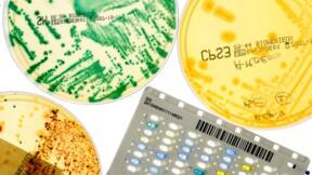 bioMérieux, nouveau record en vue pour les actions du géant de la santé : le conseil Bourse du jour