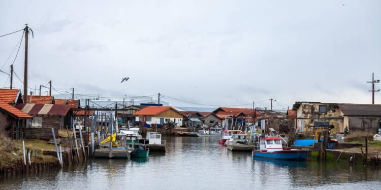 Bassin d'Arcachon : les cabanes ostréicoles de dégustation au cœur de la polémique