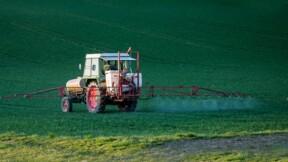 Glyphosate : après un accord sur le RoundUp, Bayer s'envole en Bourse