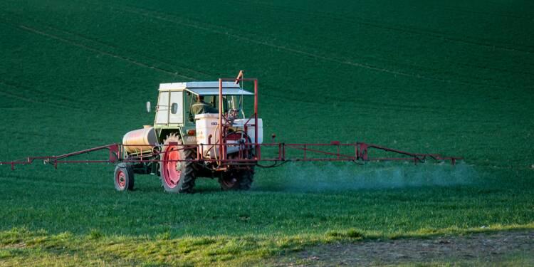 Pesticides : la moitié des produits à base de glyphosate interdits dès 2021 en France