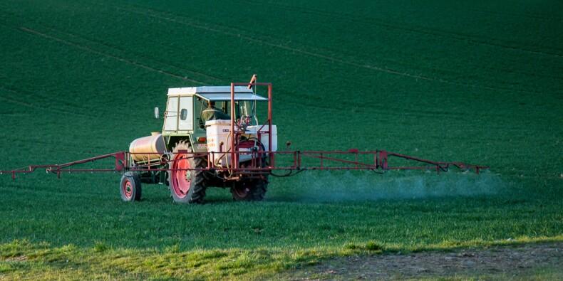 Bayer accuse une perte colossale à cause du glyphosate (Roundup)