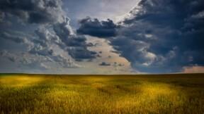 """Climat : les """"greniers à blé"""" de la planète menacés, gare à la flambée des prix"""