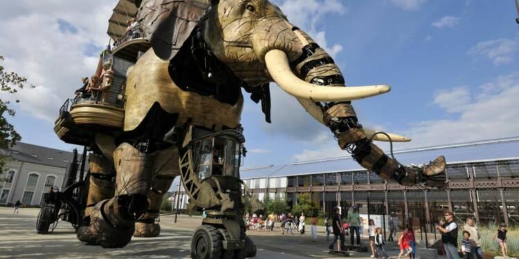Offre d'emploi : devenez pilote d'éléphant à Nantes