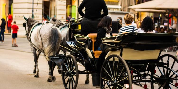 A Rouen, des habitants se mobilisent contre le ramassage scolaire en calèche
