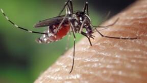 Berceau-robot, détecteur laser de moustiques... Les innovations surprenantes du CES 2020 de Las Vegas
