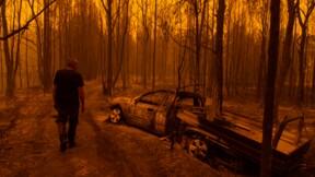 Incendies en Australie : la facture n'est pas si salée pour les assureurs