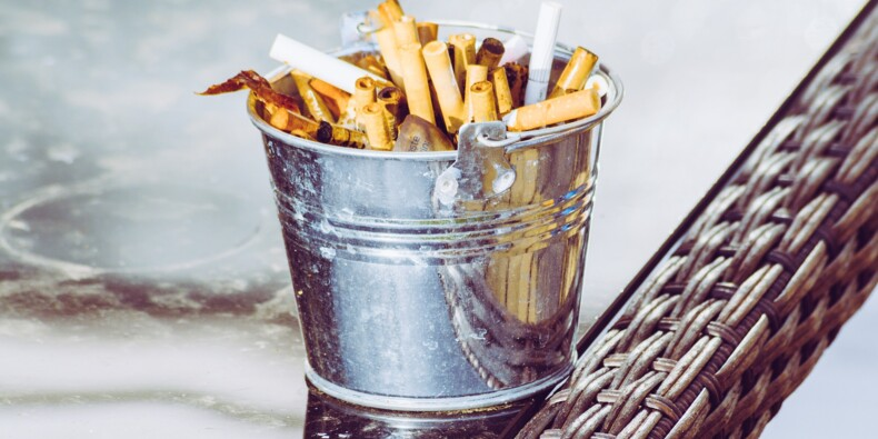 Aide aux seniors, recyclage des cigarettes... encore étudiants et déjà patrons