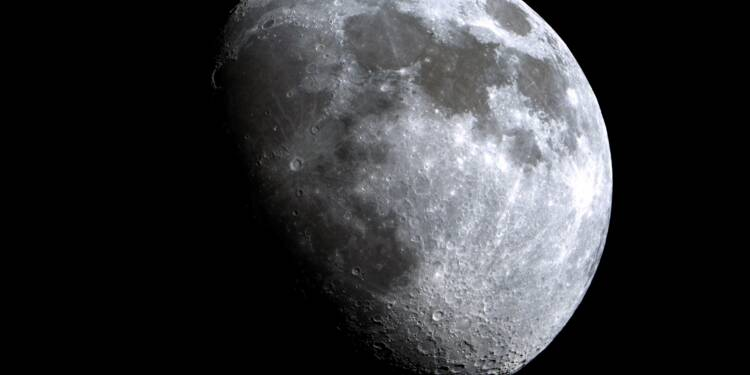 Le premier touriste lunaire cherche une petite amie pour l'accompagner