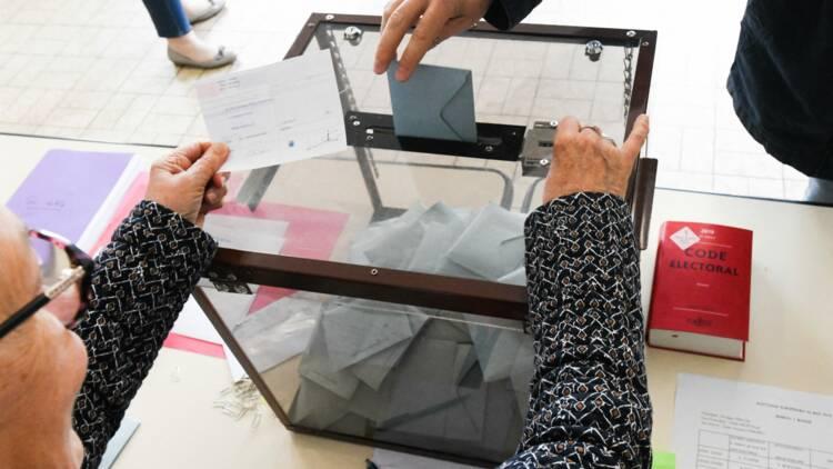 Loiseau, Bardella, Jadot... combien l'Etat a-t-il remboursé aux principaux candidats des élections européennes ?