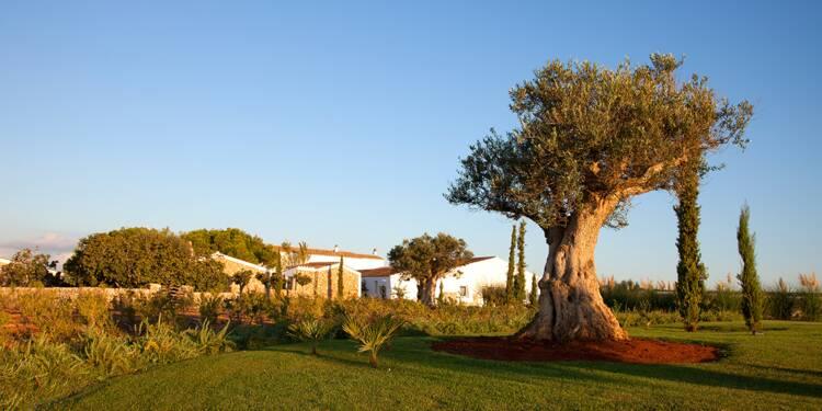 L'île de Minorque mise sur le tourisme haut de gamme et responsable